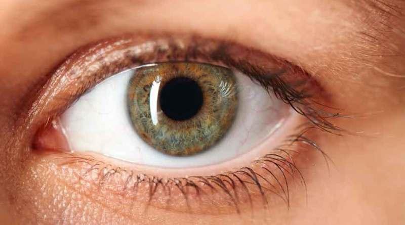 डिजिटल डिवाइसों से निकलने वाली नीली किरण, छीन सकती है आपकी आंखों की रोशनी