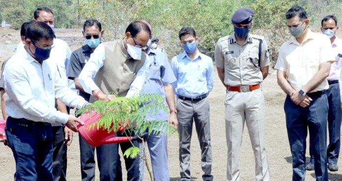 मुख्यमंत्री श्री शिवराज सिंह चौहान ने आज स्मार्ट उद्यान में गुलमोहर का पौधा लगाया