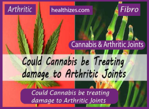 Could Cannabis be treating damage to Arthritic Joints