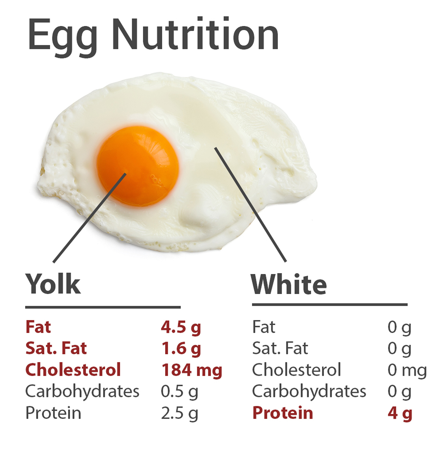 Do Eggs Cause High Cholesterol Are Eggs Bad For Cholesterol