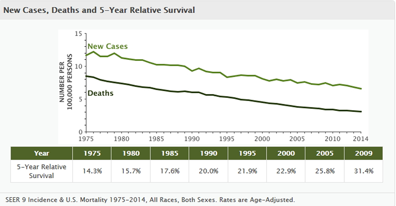 Image Result For Stomach Cancer Survival