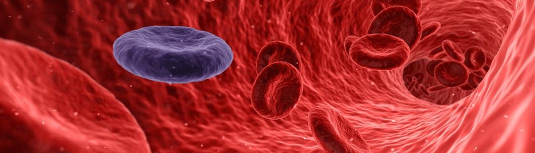 มะเร็ง โรค รักษา อาการ อันตราย ป้องกัน สาเหตุ อาหาร