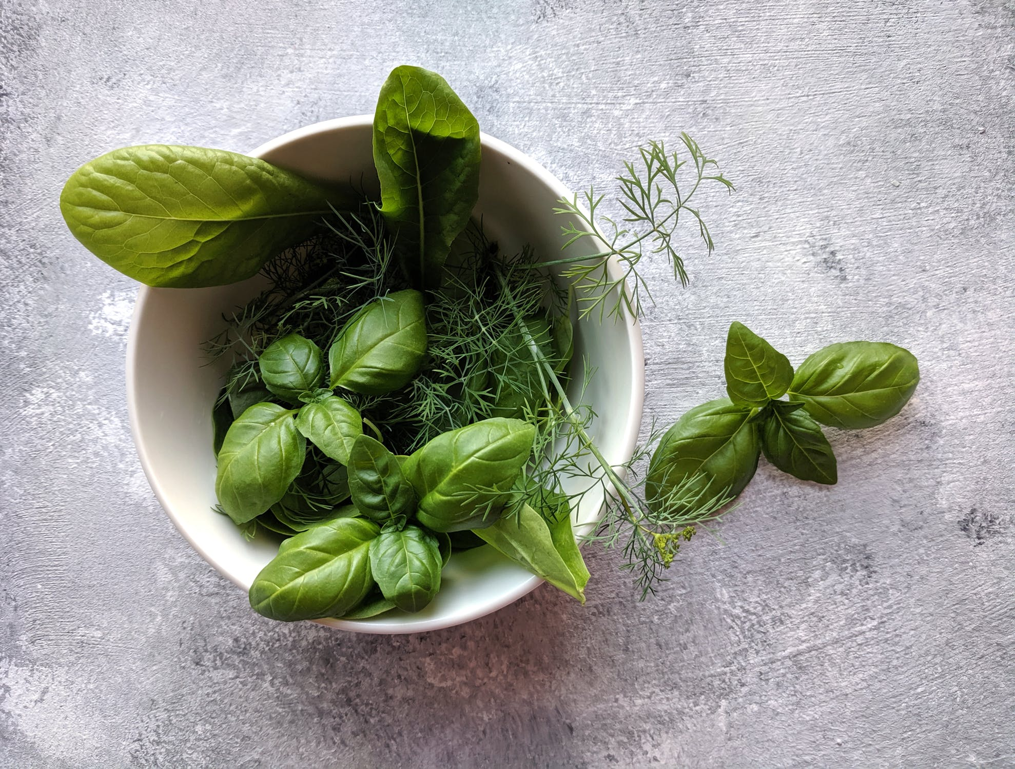 6 ประโยชน์ของ กะเพรา ผักเพื่อสุขภาพ โภชนาการ