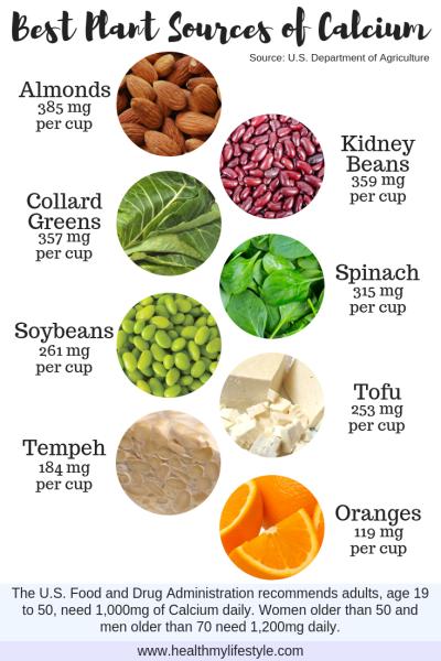 Best Plant Sources of Calcium