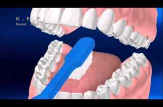 Watch This Patient Education Video on How to Maintain Oral Health