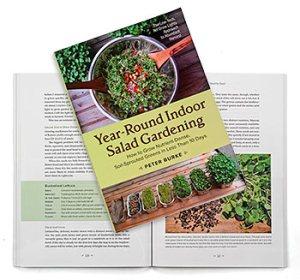 year round indoor salad 2