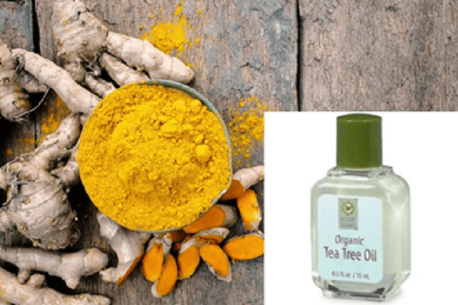Turmeric and tee tree oil poultice