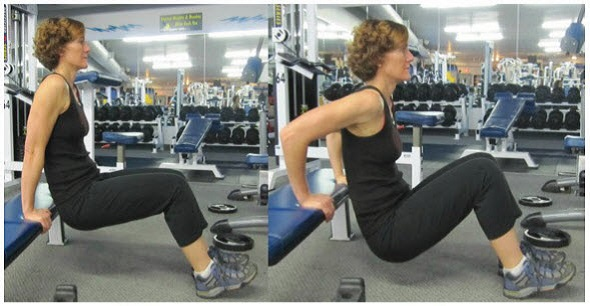 Reverse Dip for triceps and biceps