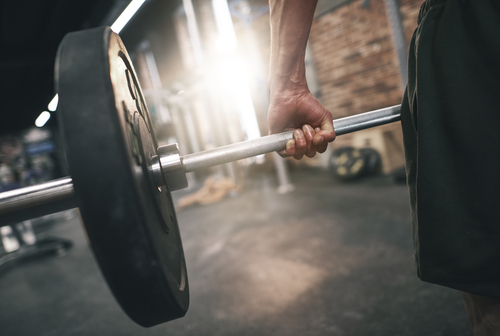 MassZymes Probiotics Review: Ingredients For Building Muscle?
