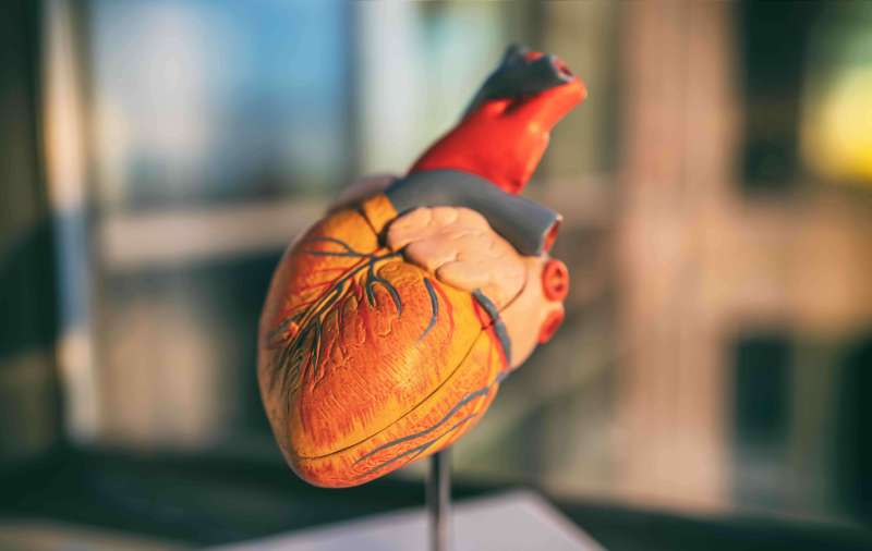 Afib Patients, Does the Risk of Your Blood Thinner Medication Outweigh the Benefits?