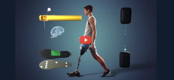 Prosthetic Leg Provides Sensory Feedback [video]