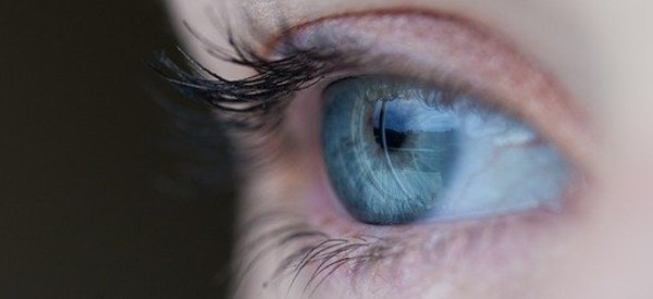 Electrodes Implanted in the Brain Can Restore Vision
