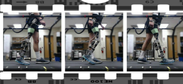 Reinforcement Learning Tunes Prosthetics in Minutes