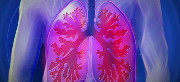 Lungs 600x274