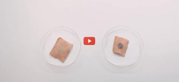 MIT's Tattoo Ink Displays Human Biometrics [video]