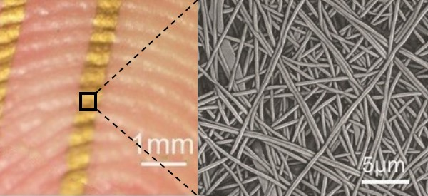 Gold Nanowire Mesh for On-Skin Electronics