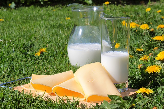 Milk & Cheese Increase Risk of Breast Cancer