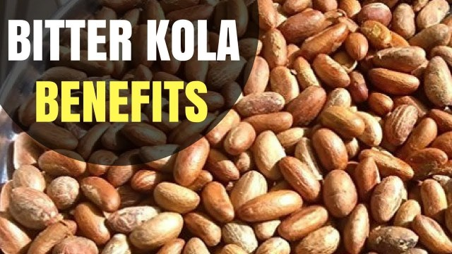 7 health benefits of Bitter Kola » Health Tips