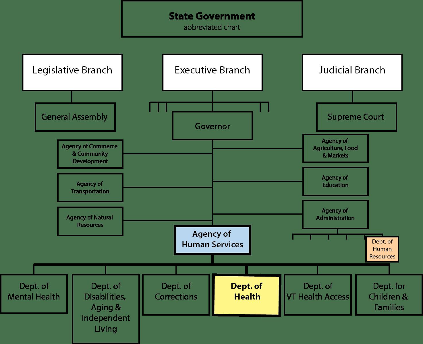 Public Health Organizational Chart Usa