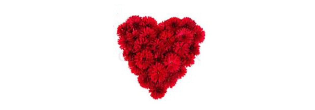 Heart made of red flowers