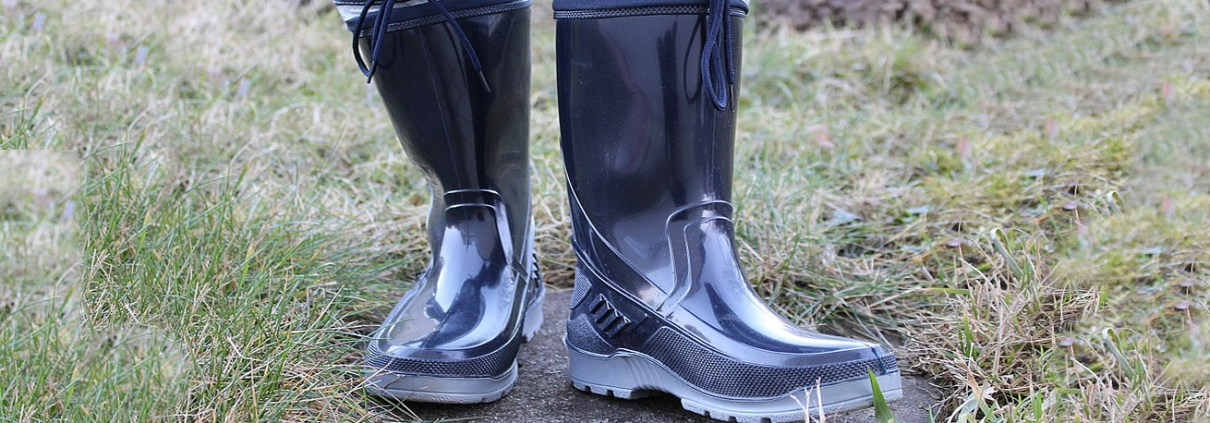 pair of wellies