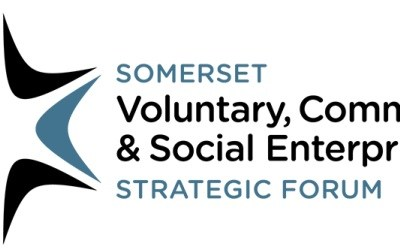 How can the Somerset Voluntary & Community Sector engage with and influence the emerging Health & Care Strategy (Fit For My Future)