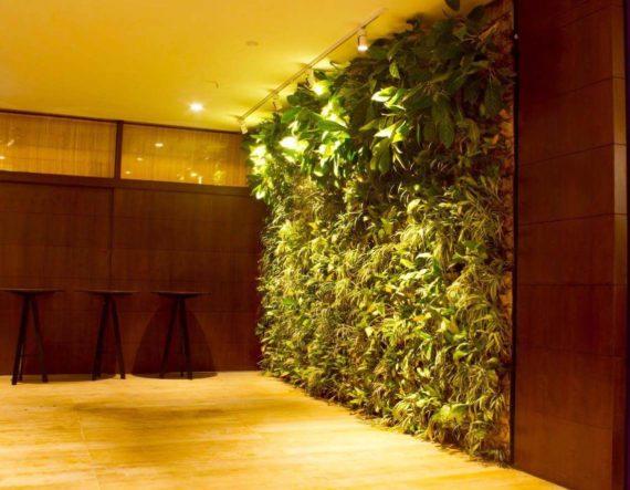 Vertical Garden :Biophilic design