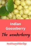 Indian Gooseberry : Cancer protective Wonderberry