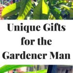 Unique Gifts for the Gardener Man:#MondayMommyMoments 46