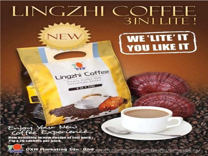 DXN Lingzhi coffee
