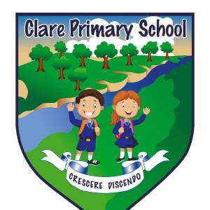 Healthy Kidz Afterschools at Clare PS