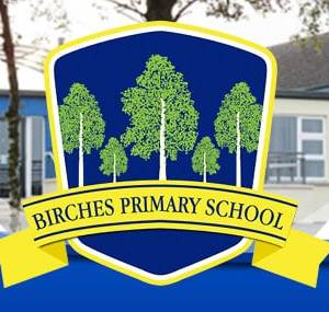 Healthy Kidz Afterschools at Birches PS