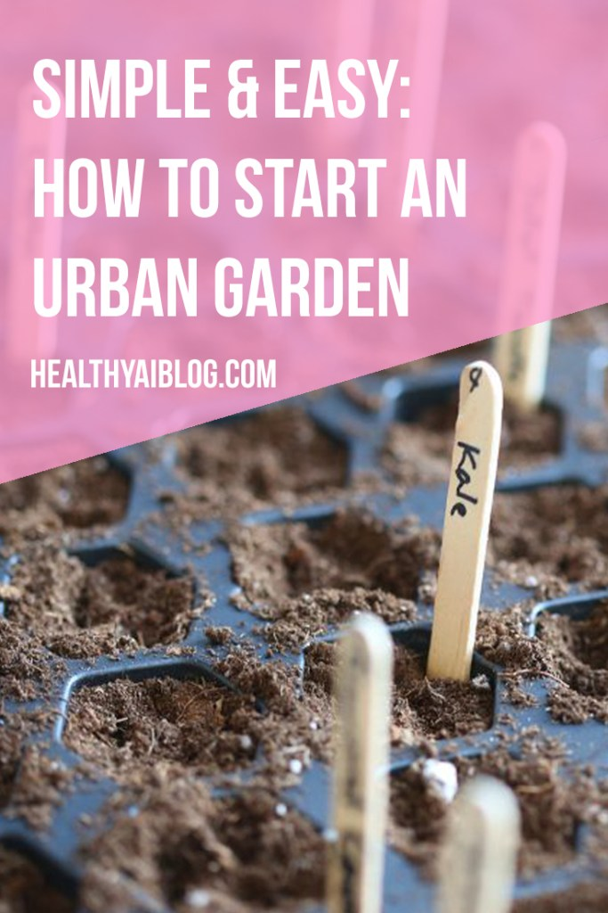 simple and easy how to start an urban garden- healthy ai blog