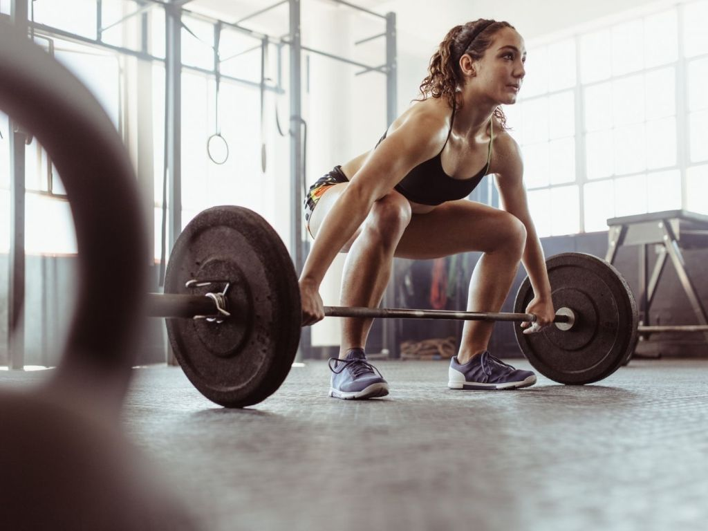 Why You Should Concentrate on Building Muscle at the Gym