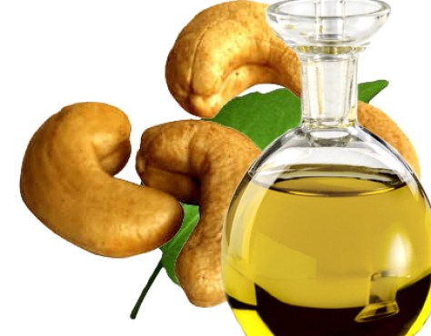 cashew Nuts Oil