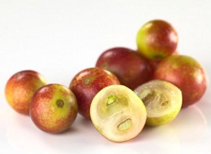 Camu Camu Berries