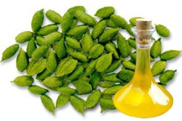 Cardamom Herb Oil