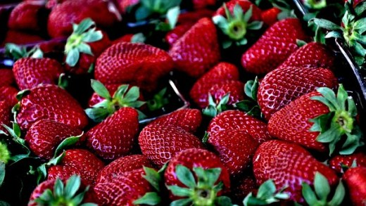 strawberry-629180__340