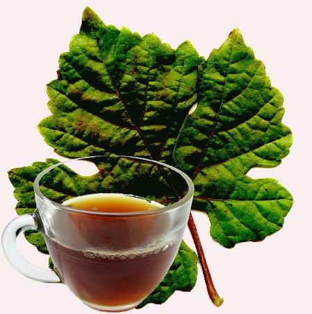 Grape Leaf Tea