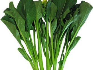 Choy Sum Vegetable