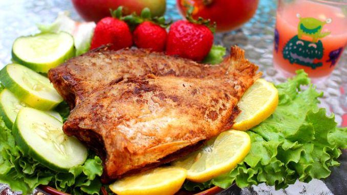 fish-1101436__480