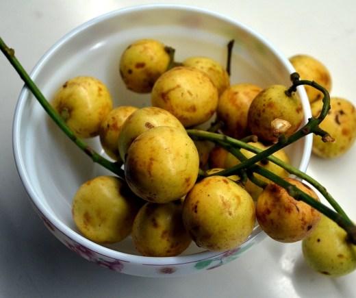 burmese-grape-2918165_960_720