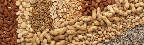 banner-industry-nuts-and-seeds