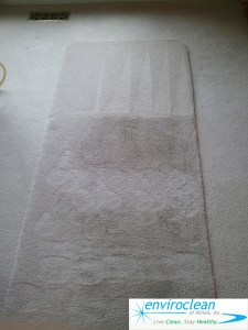 Carpet Cleaning Dundee IL