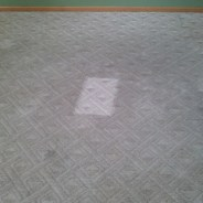 Commercial Carpet Cleaning Elgin IL