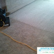 Barrington IL Carpet Cleaner