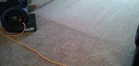 Barrington IL Carpet Cleaner