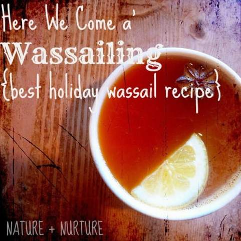 wassail recipe