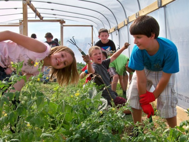 hoop house with kids