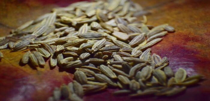 Benefits Of Flaxseeds For Diabetes